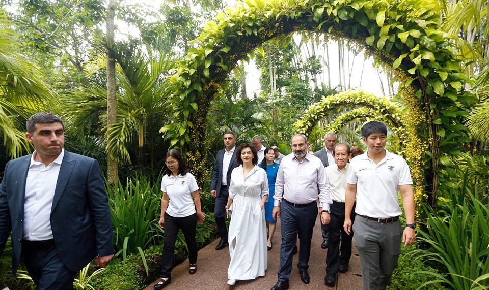 Սինգապուրում Նիկոլ Փաշինյանի և Աննա Հակոբյանի անունով ծաղիկ են անվանակոչել