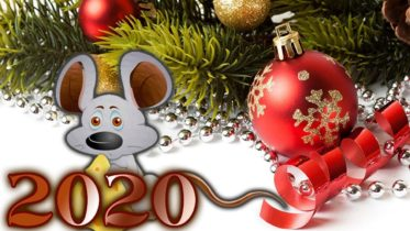 год металлической крысы